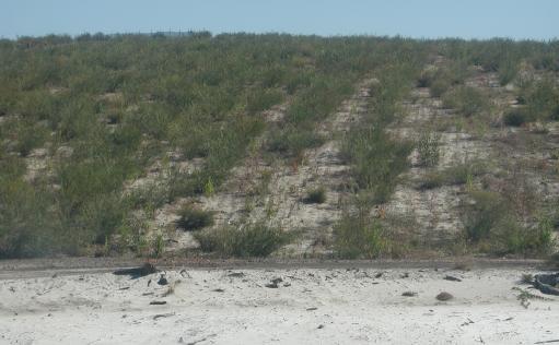 North Stradbroke Island Sand Mining History